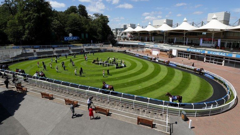 Where the grass is greener: owners can now enter the paddock