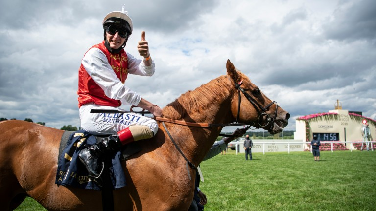 A relative to Golden Horde could be interesting on debut at Cork on Wednesday