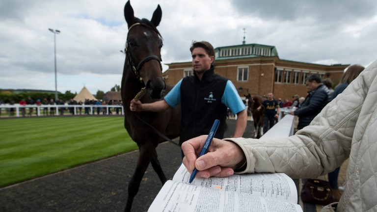 Tattersalls and Goffs have agreed a way to proceed