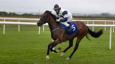 No Speak Alexander and Shane Foley ease to victory in the Irish Stallion Farms EBF Fillies Maiden.Roscommon Racecourse.Photo: Patrick McCann/Racing Post 07.07.2020