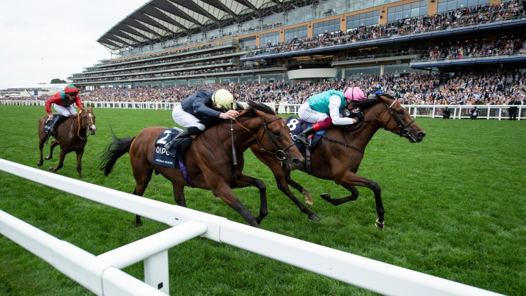 Enable (far) wins her second King George and Queen Elizabeth Stakes after a titanic battle with Crystal Ocean last year