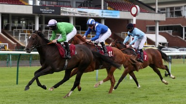 Brad The Brief (green) beat Byline (light blue) the last time these two faced off at Haydock