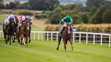 Laurel Wreath goes clear to land the fillies maiden at Navan on Thursday