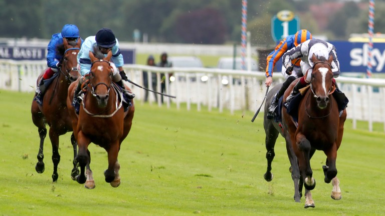 Thunderous (left) gets up to win the Dante Stakes at York ahead of Highest Ground