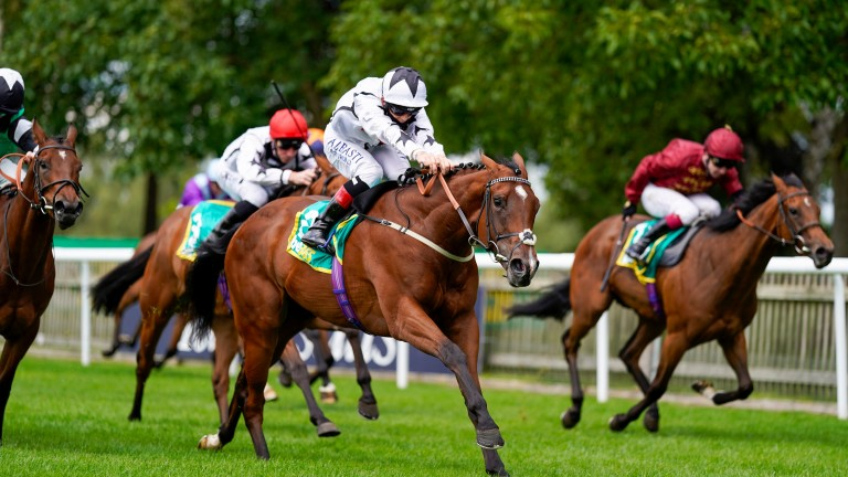 Dandalla: keeps on strongly to hold her rivals at bay