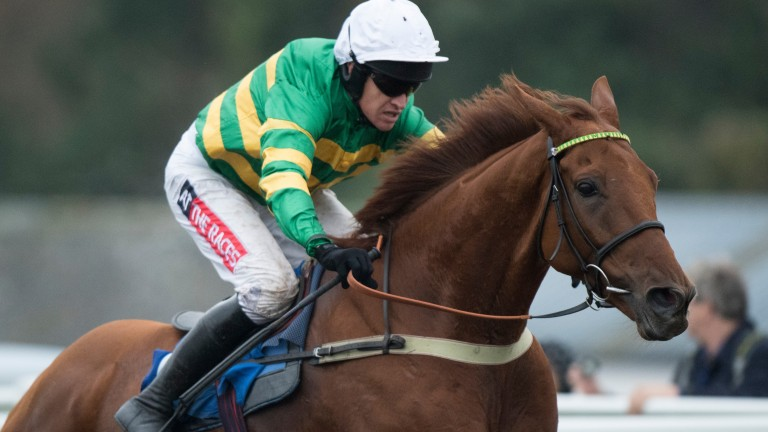 Yanworth: JP McManus-owned star won 13 of his 28 starts and £361,938 in prize-money