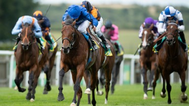 Master Of The Seas storms to victory in the  Superlative Stakes at Newmarket