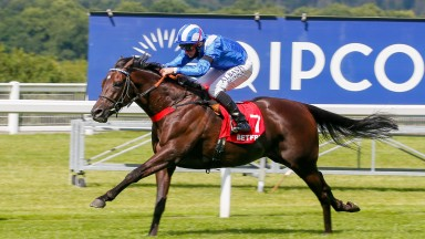 Mohaather blitzes clear of the field to win the Summer Mile Stakes at Ascot