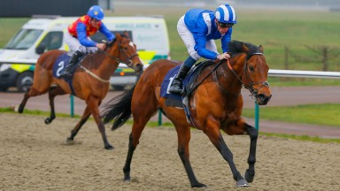Badri: arrives at Yarmouth in fine form, having won his last two starts