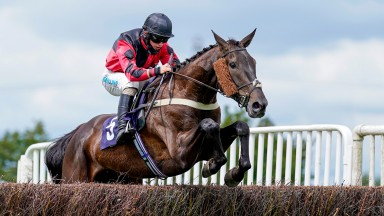 SOUTHWELL, ENGLAND - JULY 14: Sean Bowen riding Coole Lion clear the last to win The Event & Stadium Signage At signsolutions.org Novices' Handicap Chase at Southwell Racecourse on July 14, 2020 in Southwell, England. Owners are allowed to attend if they