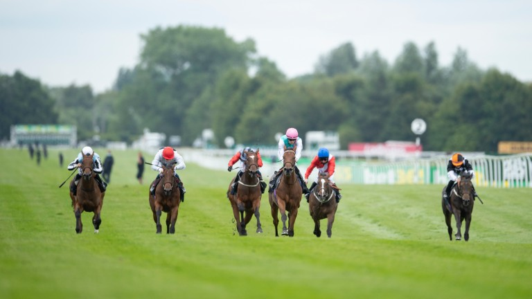 Pomelo (pink cap) could bounce back to form at Goodwood