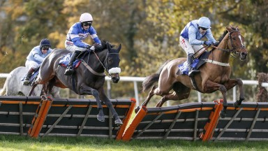Shoal Bay: recorded his fourth victory for Colin Tizzard at Southwell