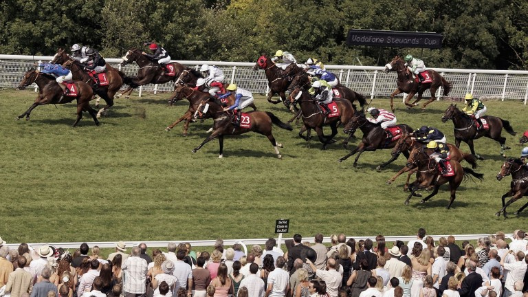 Borderlescott and Royston Ffrench lead the field home to land the 2006 Stewards' Cup at Goodwood