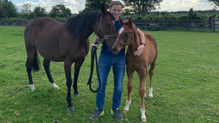 Kevin Blake flanked by Midnight Oasis and her Camacho colt foal. The Oasis Dream mare is in foal to Caravaggio