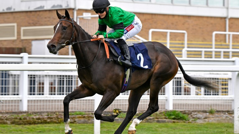 Caroline Dale: scored at Windsor last time after finishing third in the Queen Mary