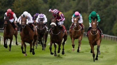 Kastasa makes a triumphant return in the Vintage Tipple Stakes at Gowran