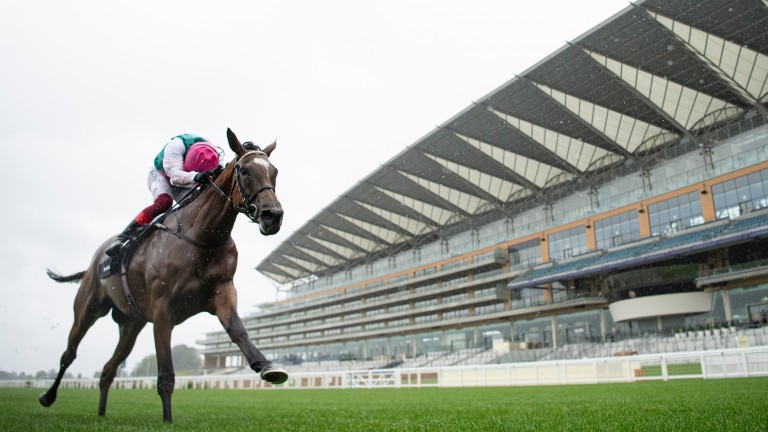 Perfect performance: Enable strides past the line to win a third King George