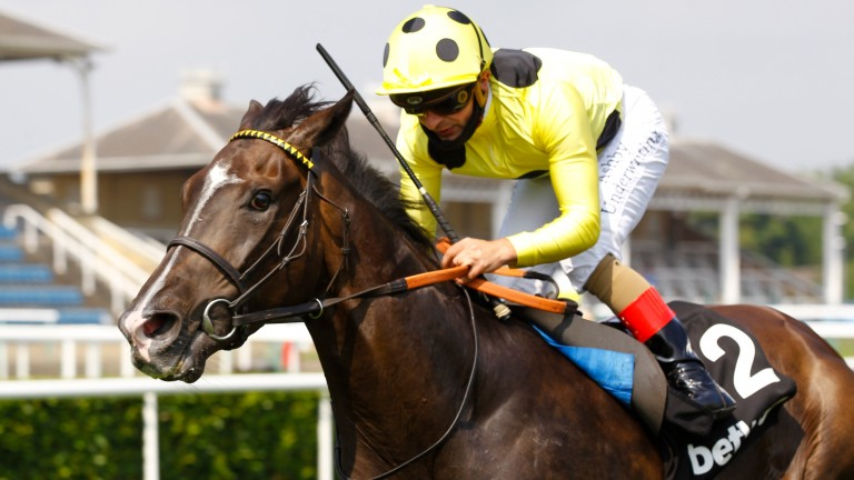 Fifth Position: third in the John Smith's Cup last time