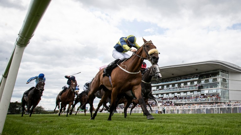 Surrounding: bid for back-to-back wins in the Corrib Fillies Stakes could be in doubt over soft ground