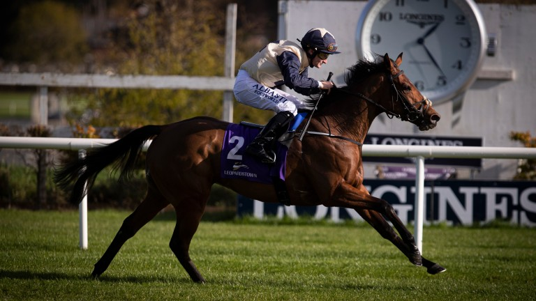 Celestial Object: former barrier trial and maiden winner has solid credentials in Listed company at Galway on Tuesday