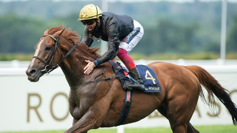 Stradivarius: the undisputed star on day three of Royal Ascot
