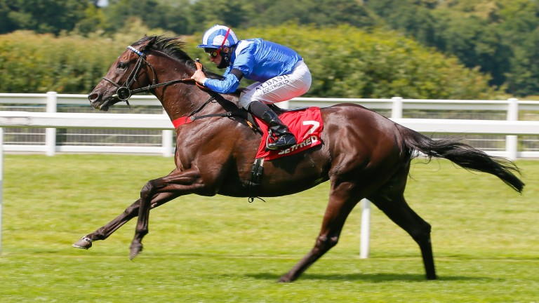 Mohaather: claimed the Sussex Stakes at Goodwood last month