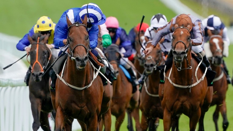 Maydanny (blue): one to keep on side from the Mark Johnston yard