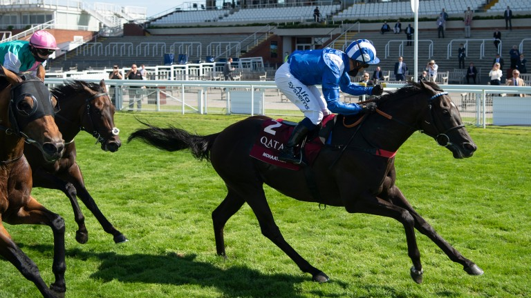 Mohaather: Sussex Stakes hero could go to France next