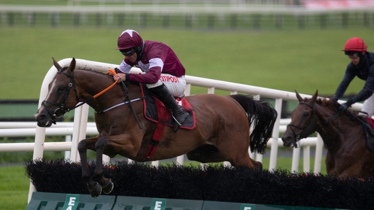 The Very Man: a Listed winner at Galway