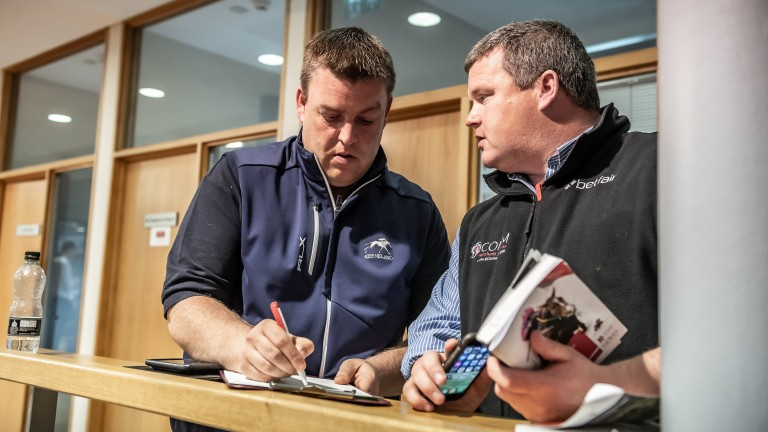 Bolstering the squad: Aidan 'Mouse' O'Ryan and Gordon Elliott secured the exciting prospect Grand Roi at the Doncaster sales