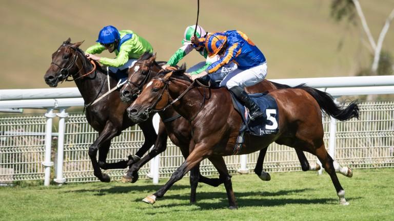 Mogul (near): stays on best to land Gordon Stakes