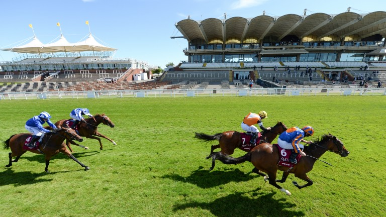 Fancy Blue (front): held off One Voice to win the Nassau Stakes