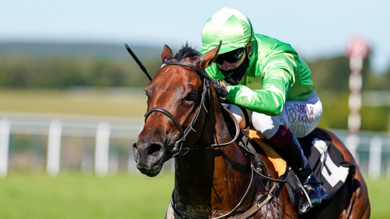 Acklam Express: placed in the Al Quoz Sprint last time