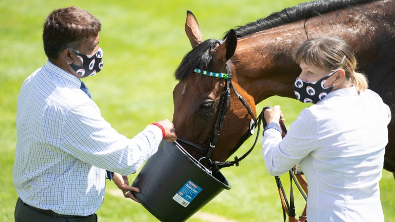 One Master cools off after her Goodwood heroics