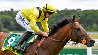 Nahaarr: looking to back up his Newbury win with success in the Stewards' Cup