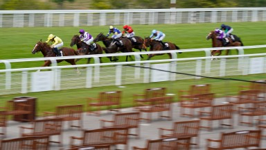 CHICHESTER, ENGLAND - JULY 31: William Buick riding Zamaani (L) win The New Unibet Instant Roulette Nursery at Goodwood Racecourse on July 31, 2020 in Chichester, England. Owners are allowed to attend if they have a runner at the meeting otherwise racing