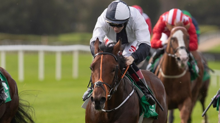 Flaming Moon: three-year-old rates an exciting prospect for Matthew Smith