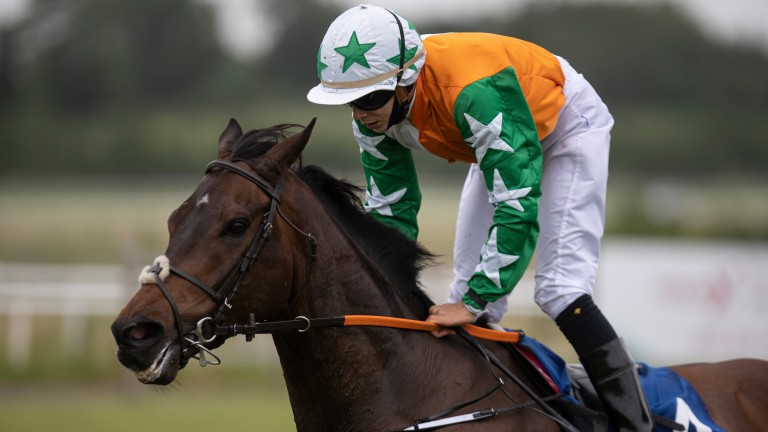 Laugh A Minute: ready winner at Limerick before not being disgraced last time