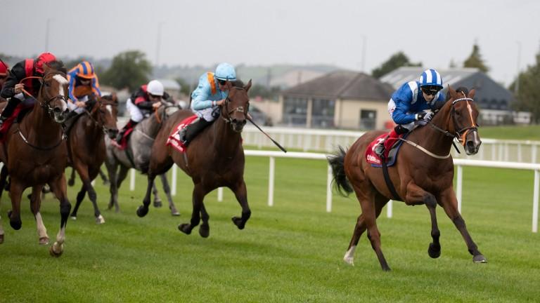 Jassaar: winner of last year's Irish Cambridgeshire