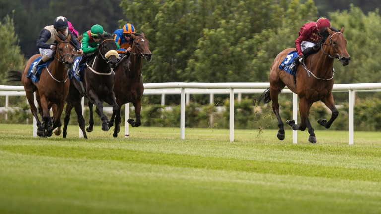 Know It All and Ben Coen storm clear of their rivals in the Derrinstown Stud Fillies' Stakes at Leopardstown