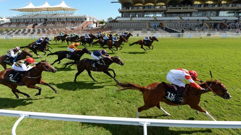 Summerghand (centre) surges late to head Kimifive (nearest) in the Stewards' Cup