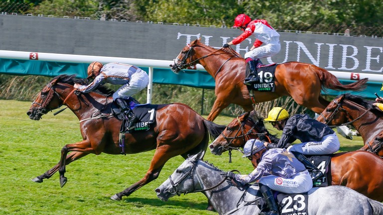 Summerghand (1) wins the Stewards' Cup off top weight, with Kimifive (far rail) in second