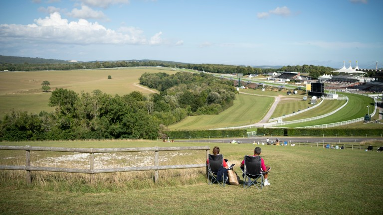 Goodwood: just one of many spectacular racecourses in Britain, with a stunning backdrop