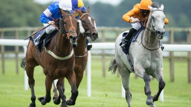 Leicester lover: Dreamboat Annie (Isobel Francis, left) finishing second to the grey Cappananty Con at Bath last month