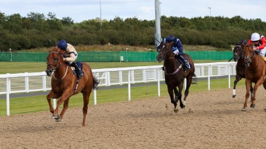 Glen Shiel (Paul Mulrennan) proves far too good for Danzeno and Harry's Bar (right) in the feature 6f conditions race at Newcastle
