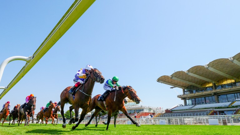 One Master (far side) leaves it late in last week's Oak Tree Stakes at Goodwood