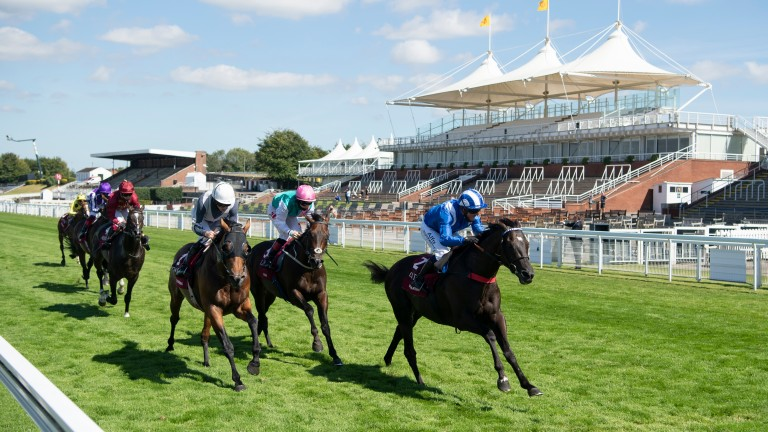 Mohaather: won the Qatar Sussex Stakes at Glorious Goodwood