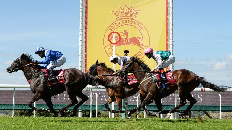 Mohaather (left): showed a blistering turn of foot to win the Sussex Stakes