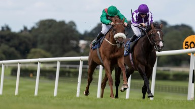 Zawara ridden by Gavin Ryan wins the Nursery Of Champions Maiden from Amhran Na Bhfiann.Naas Racecourse.Photo: Patrick McCann/Racing Post 02.08.2020
