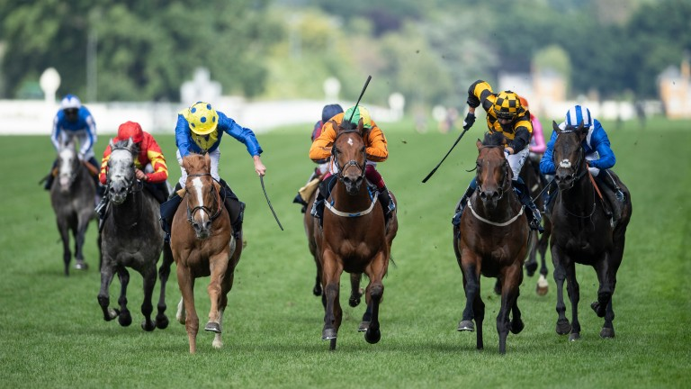 Sceptical (orange, centre): just denied in the Diamond Jubilee Stakes by Hello Youmzain and Dream Of Dreams